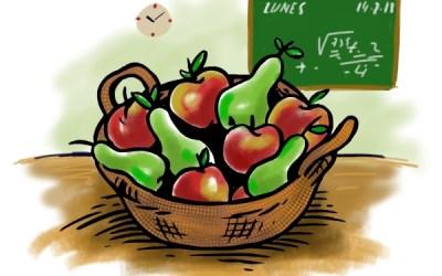 ¿Qué es la educación diferenciada y qué ventajas aporta?