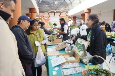 Reconocen amas de casa impacto del Bazar Verde de Toluca (2)