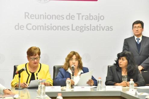 Elaborar Legisladores diagnóstico que contribuya a detonar el Turismo y a generar empleos