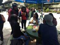Elaboran alebrijes estudiantes toluqueños con materiales de reuso
