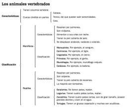 esquemas1