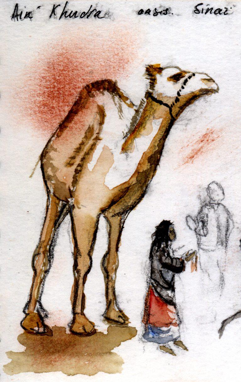 Sinaï, Aîn Khudra