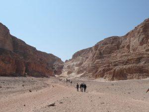 Sinaï, Ain Khudra