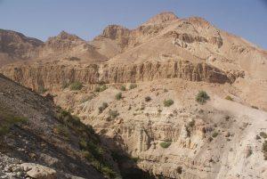 Désert 33 – David alla demeurer au désert (1S 23)