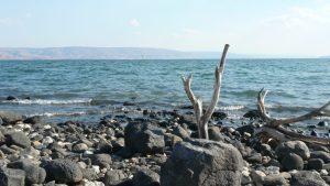Mer de Galilée, Tabga (F.B.)