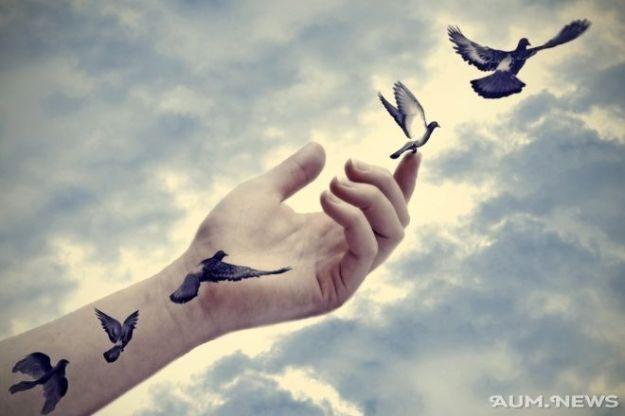 hand birds 3232