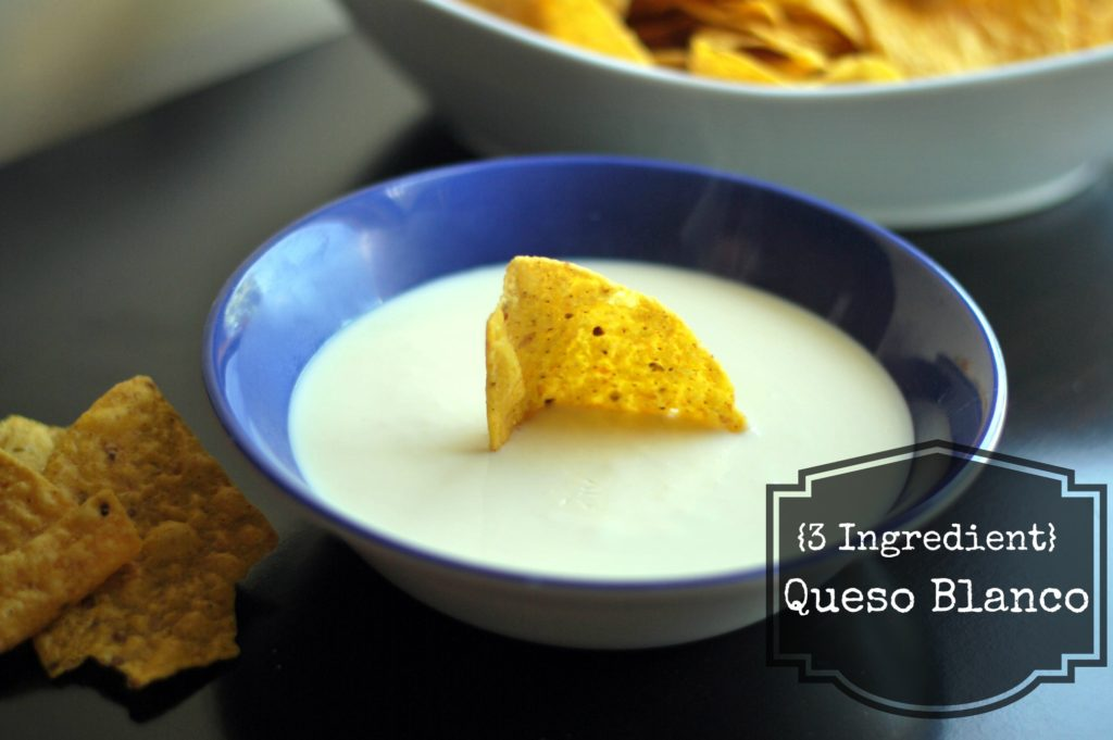 3 Ingredient Queso Blanco | Aunt Bee's Recipes