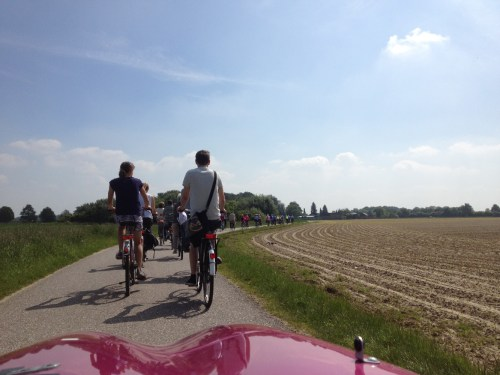 Cyclists in open farmland
