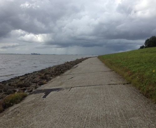 Riverside path in the teeth of a gale