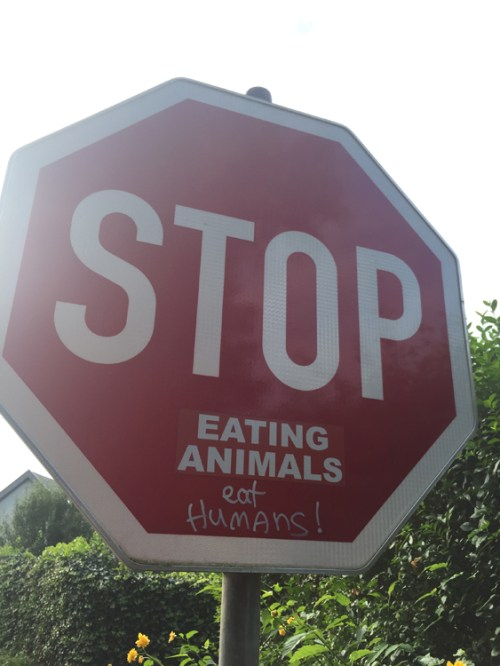Stop Eating Animals Eat Humans