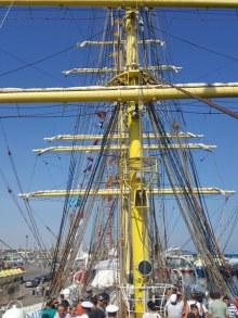 regata-marilor-veliere-10_450x600