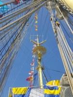 regata-marilor-veliere-15_450x600