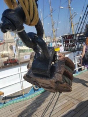regata-marilor-veliere-3_450x600
