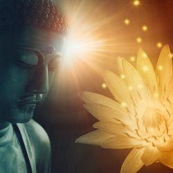 Buddha Blatt