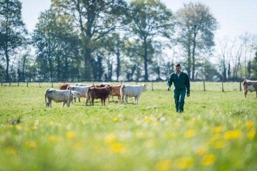 Reportage d'un élevage pour les Mousquetaires
