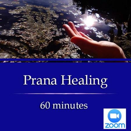 Prana Healing 60 min
