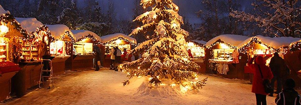 christmas market tour zagreb,vienna,budapest