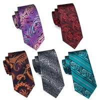 Hi-Tie 5PCS Retro Paisley Neckties for Men Woven Silk ...