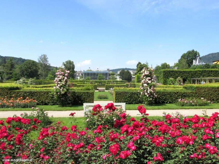 Rosengarten Baden-Baden