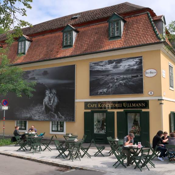 Kurstadt Baden La Gacilly Ausflugsziele Niederösterreich