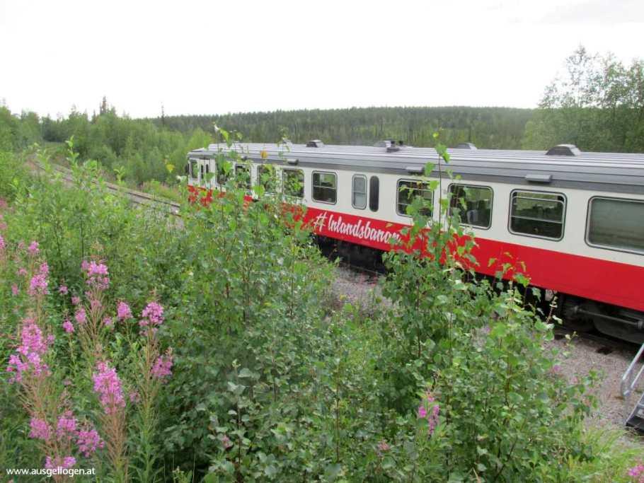 Nordpolarkreis Schweden Inlandsanan