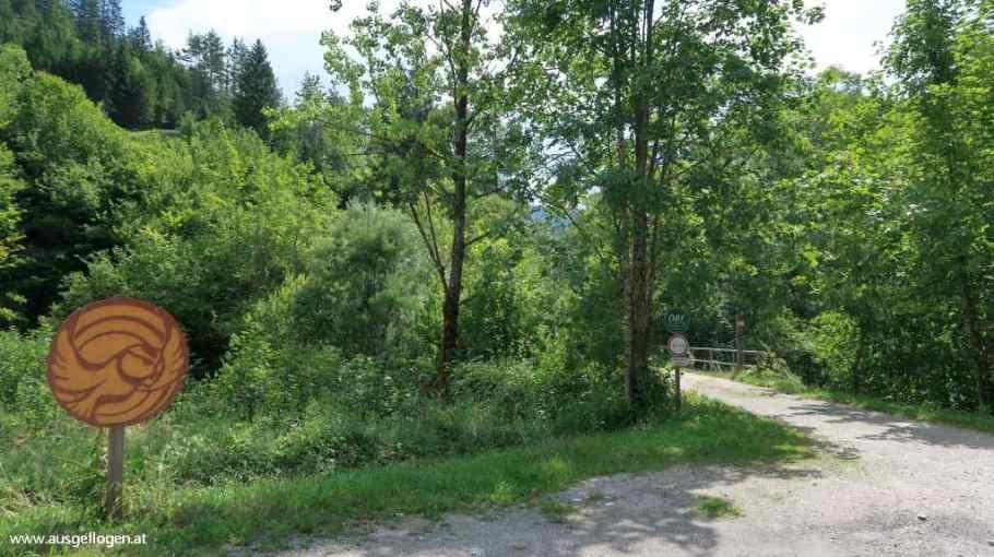 Dürrenstein Wildnisgebiet Eulenweg