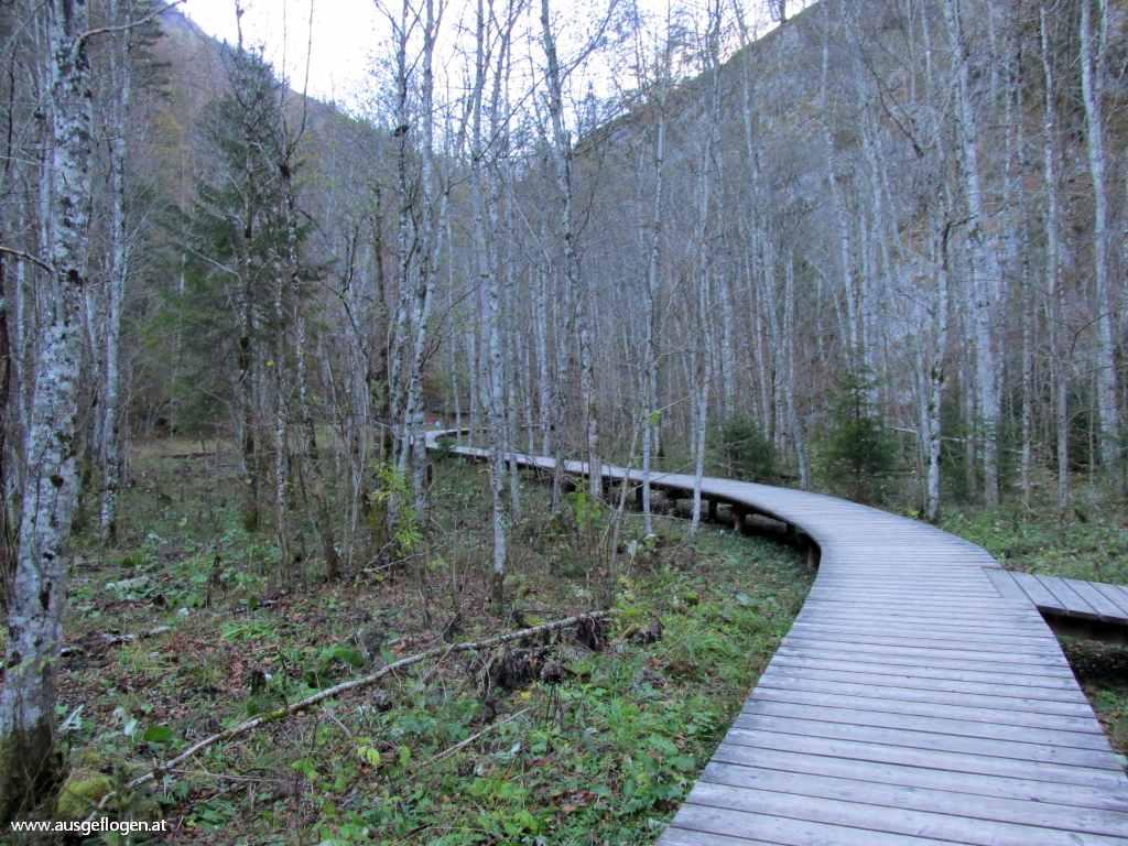 Mendlingtal Holztrift