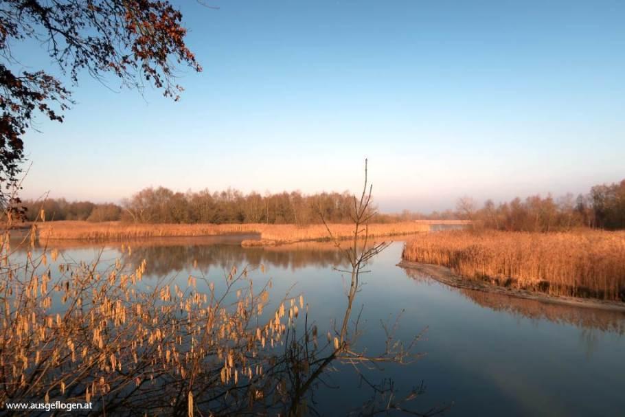 Naturschutzgebiet Europareservat Unterer Inn