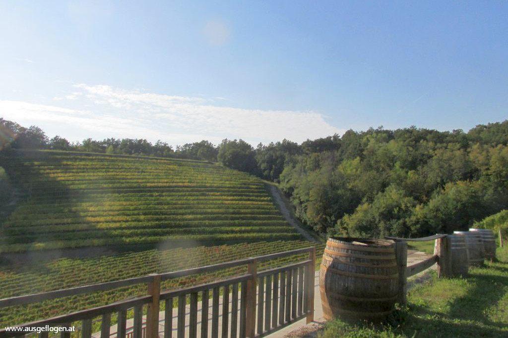 Friaul Roadtrip Wein