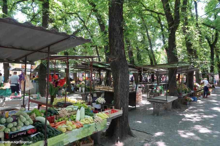 Donauschwaben Vojvodina Senta