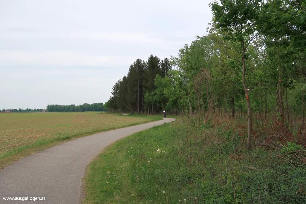 Lanzenkirchen Leithaauen