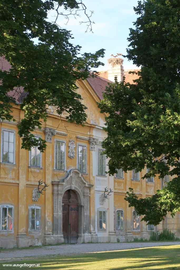 Schloss Marchegg