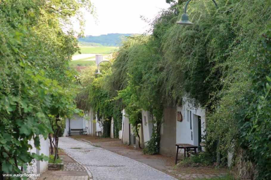 Kellergasse Rösslberg Poysdorf