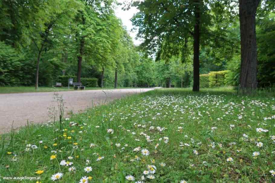 Wiener Neustadt Sehenswürdigkeiten Akademiepark