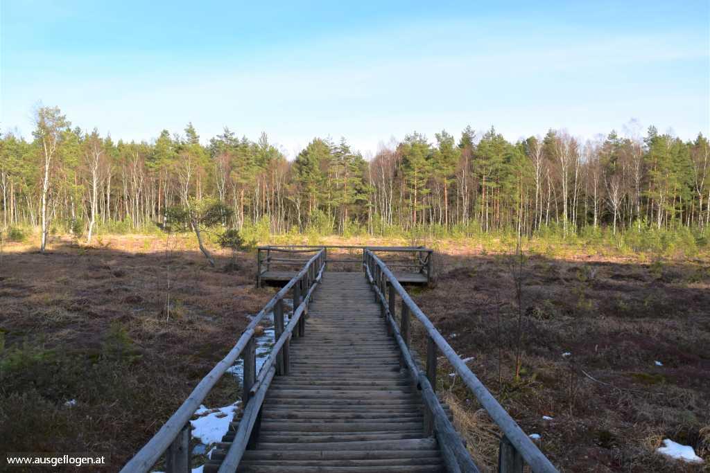 Heindreichstein Naturpark Heidenreichsteiner Moor