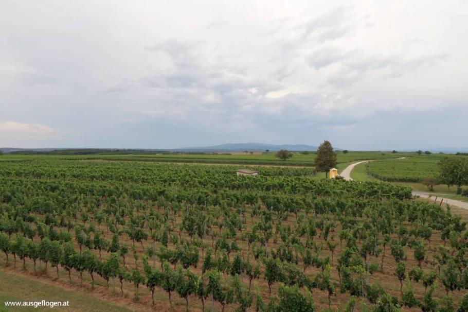 im Sonnenland zwischen See und Wein:rund ums Mittelburgenland
