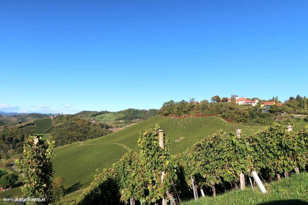 Spielfelder Weingärten südsteirische Weinstraße