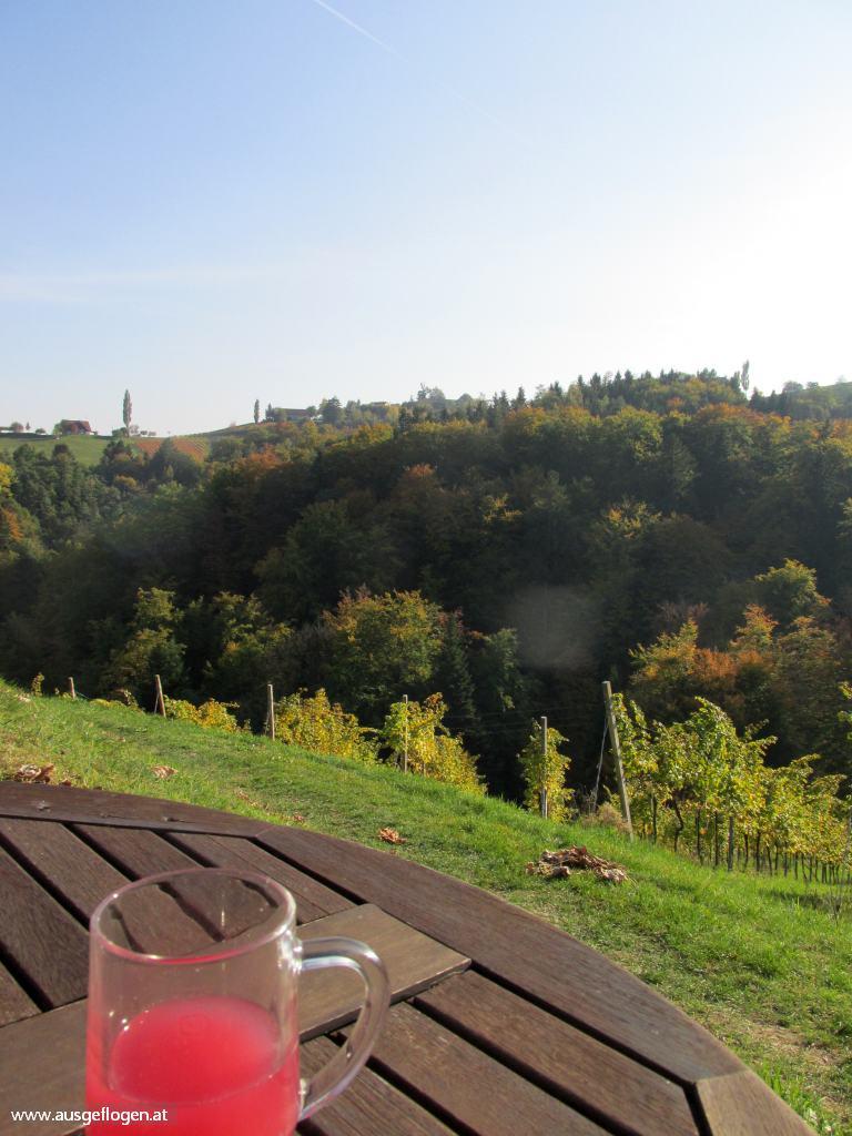Sturm und Kastanien Südsteiermark Herbst Weinwandern