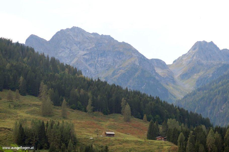 Waldviertel aus dem BilderbuchFratres bis Litschau