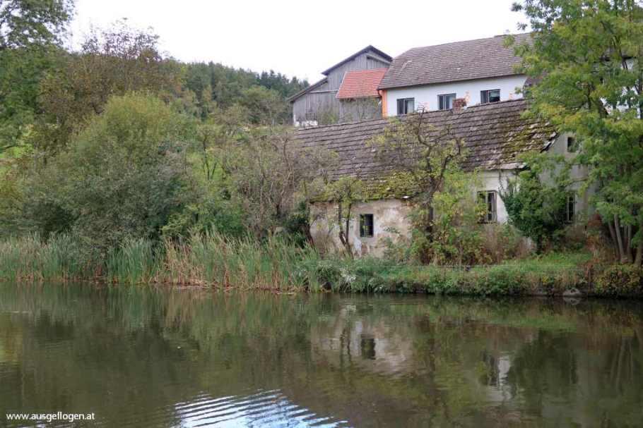 Waldviertel Teich Reinpolz