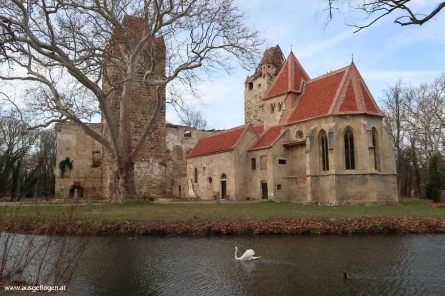 verfallenes Schloss Pottendorf