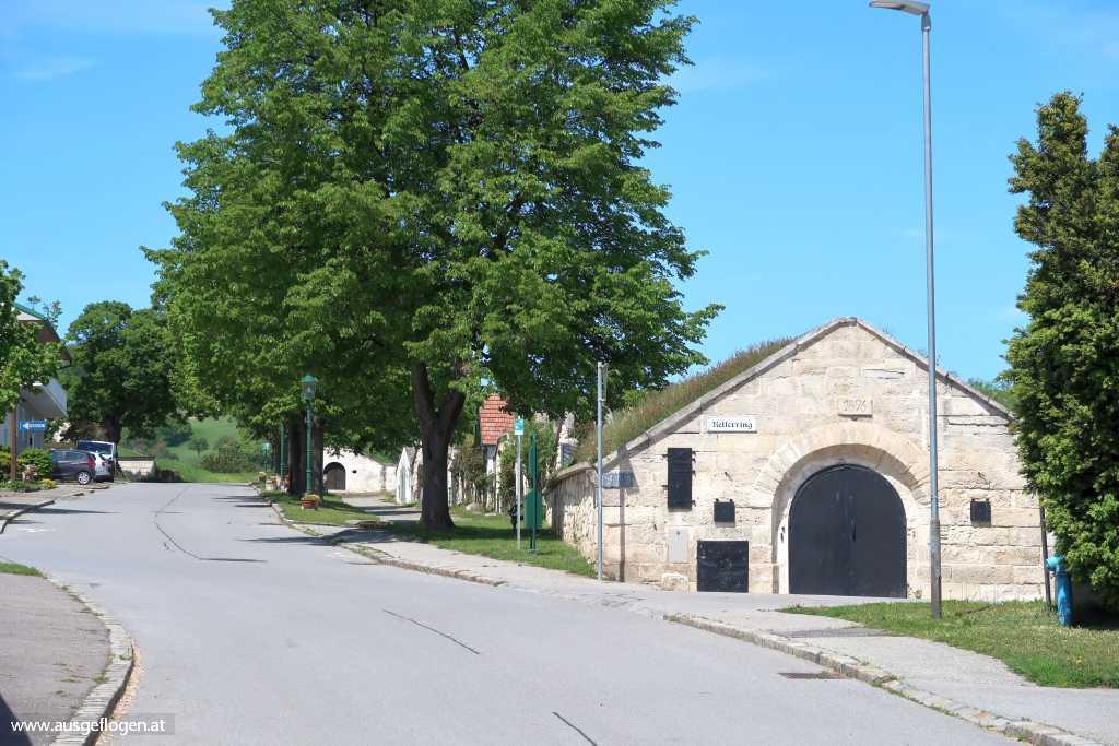 Kirschblütenradweg Kellerring Breitenbrunn