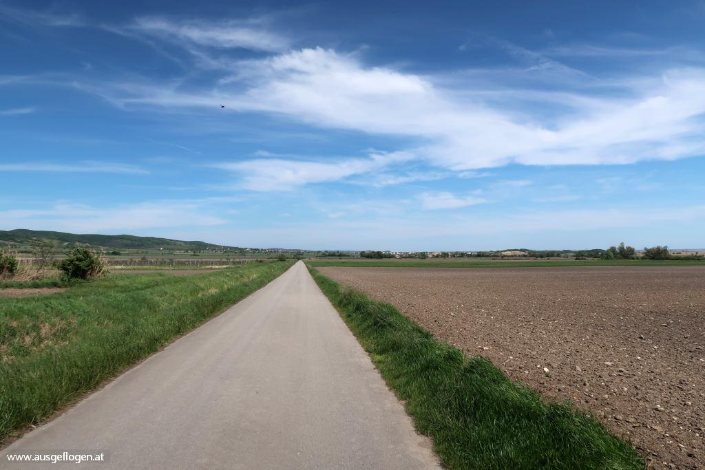 Einmündung Kirschblütenradweg B12 Neusiedlersee Radweg B10