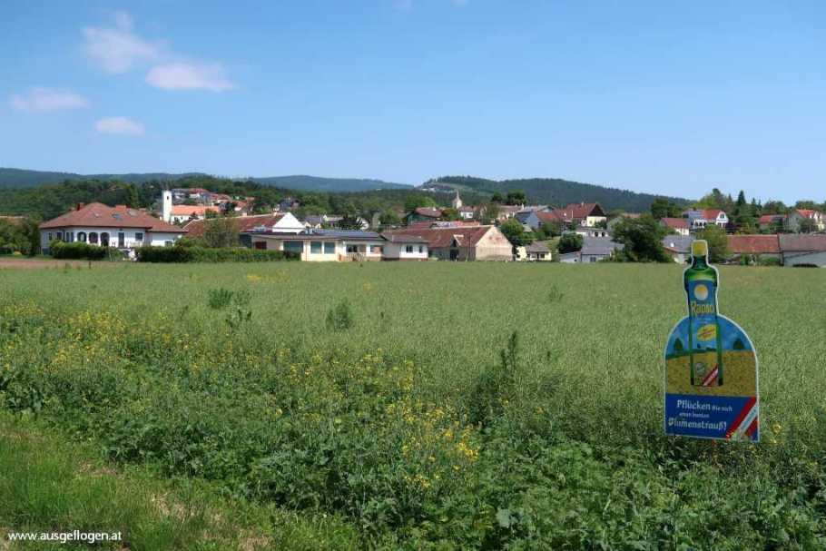 Paradiesroute Südburgenland Etappen Markt Neuhodis