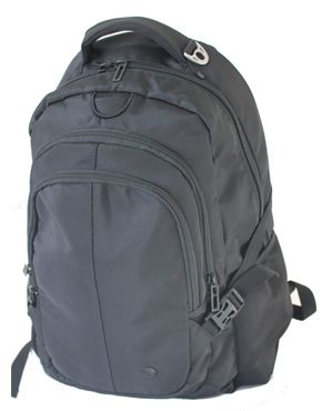 CBD Laptop Backpack