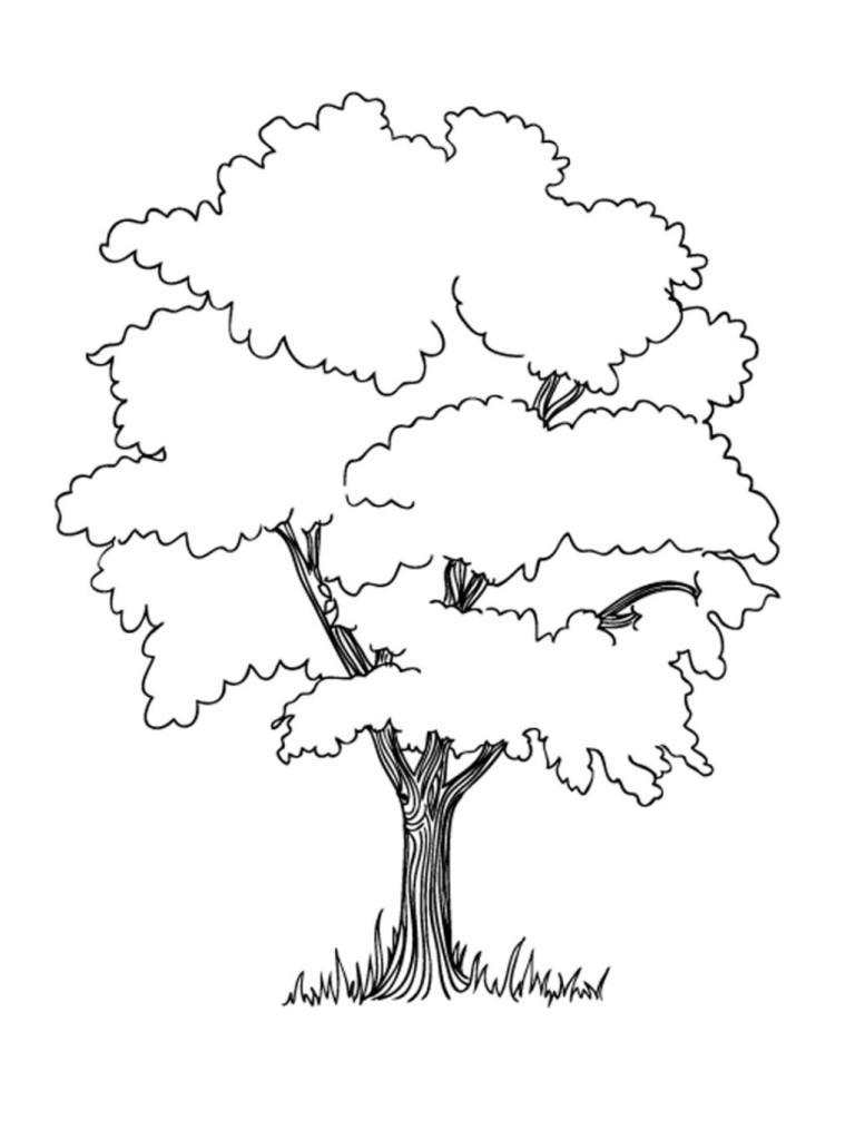 Malvorlagen zum Drucken Ausmalbild Baum kostenlos 2