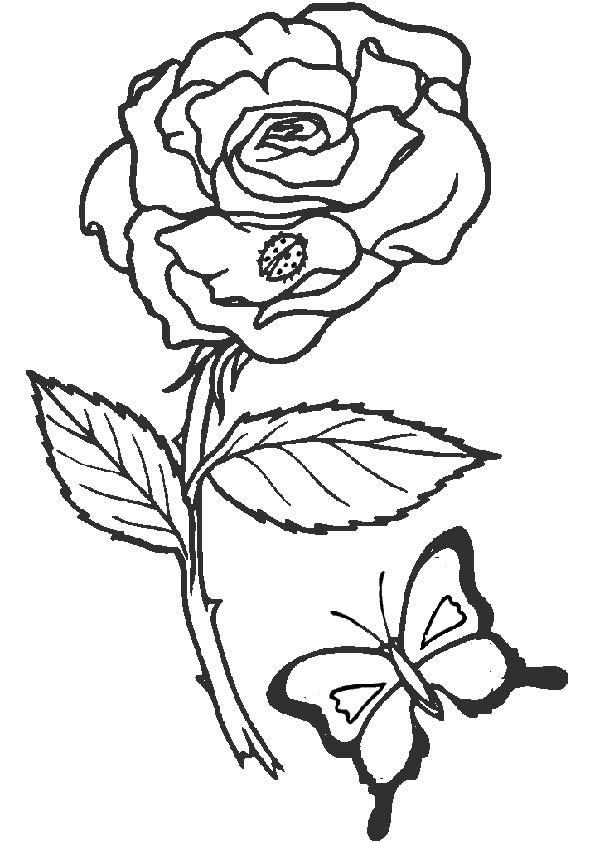Ausmalbilder Blumen 2 Ausmalbilder Malvorlagen