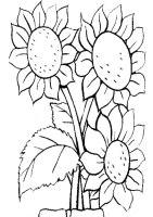 Ausmalbilder Blumen 3   Ausmalbilder Malvorlagen