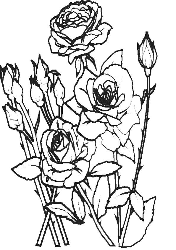 Ausmalbilder Blumen 9 Ausmalbilder Malvorlagen