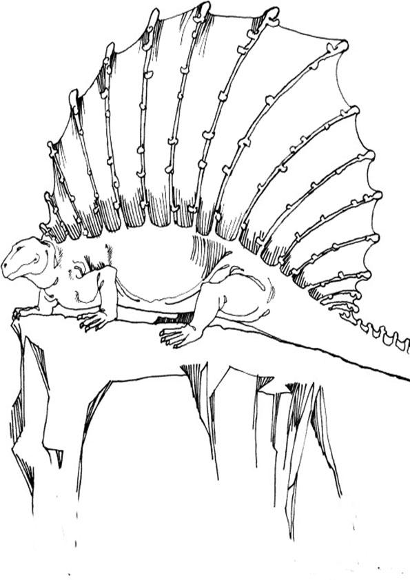 Ausmalbilder Dinosaurier 3 Ausmalbilder Malvorlagen
